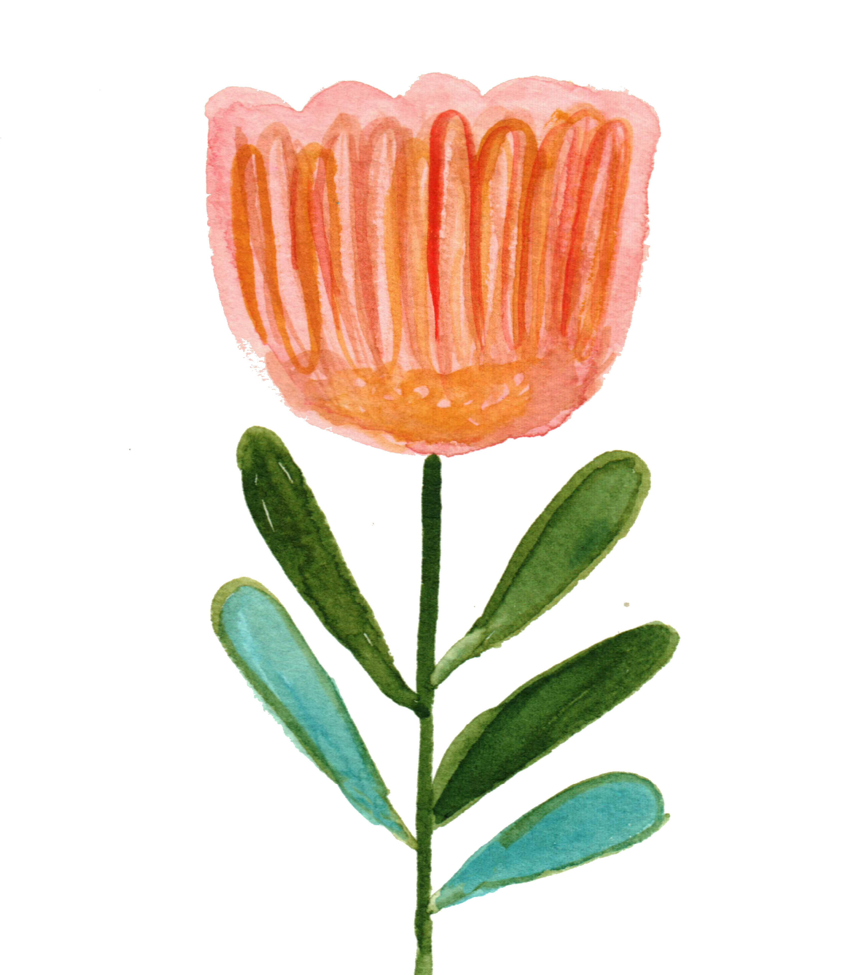 paint tulips with watercolor and acry